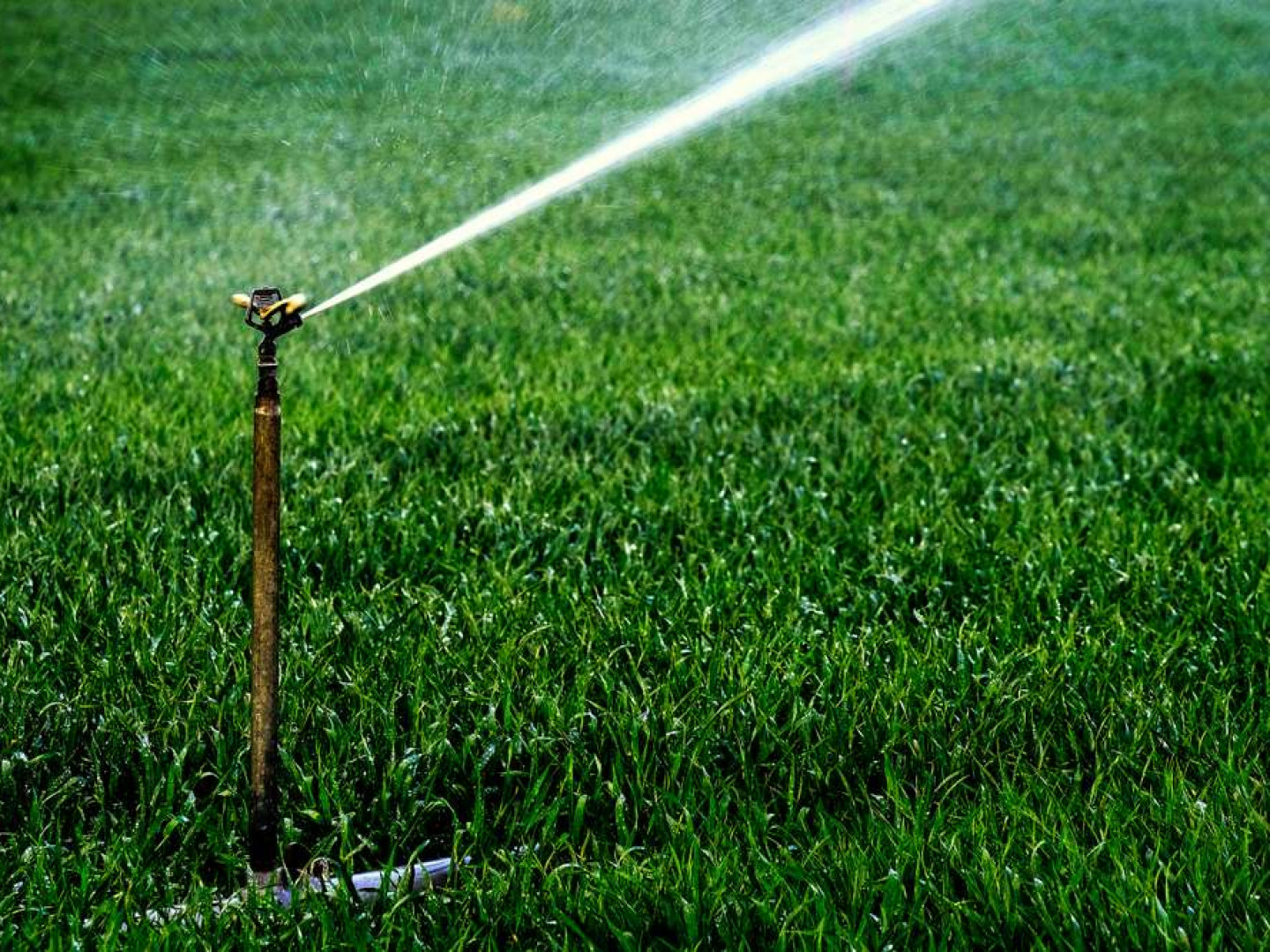 IRRIGATION SYSTEM REPAIR SERVICES IN MIDDLEBURG & LAKESIDE, FL